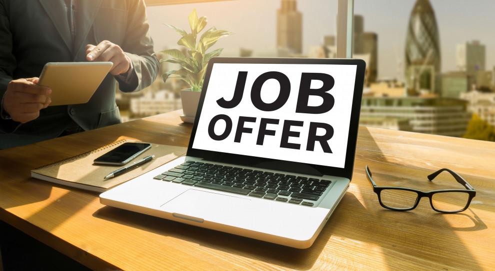 W Polsce w lipcu 2021 r. liczba ukazujących się w internecie ofert pracy była większa niż przed epidemią (Fot. Shutterstock)