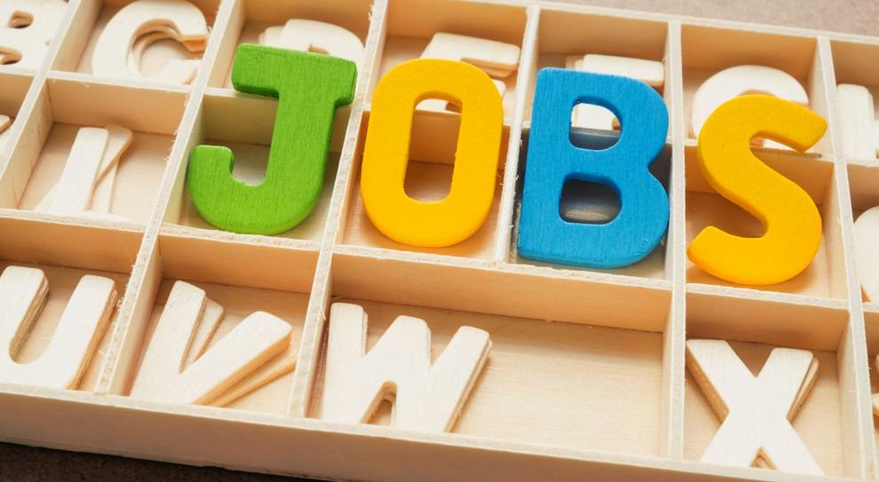 Liczba ukazujących się w internecie ofert pracy jest obecnie większa niż przed epidemią (Fot. Shutterstock)
