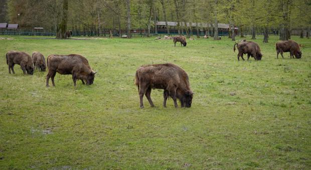 Politechnika Białostocka zacieśnia współpracę z parkami narodowymi