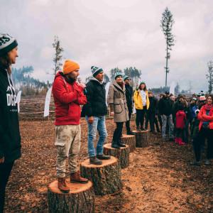 Zasadzili 90 tysięcy drzew