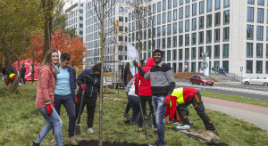 Kilkadziesiąt drzew pojawiło się w Katowicach. Zasadzili je pracownicy