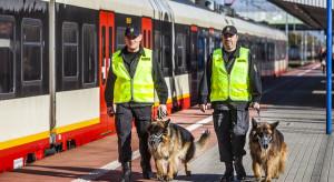 Będą nowe zasady przydzielania psa lub konia służbowego